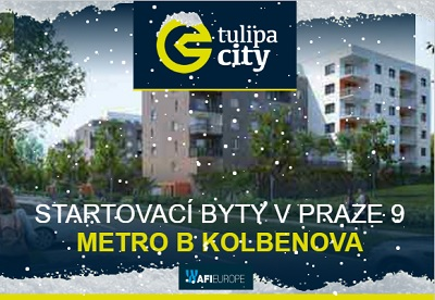 [news/CITY_NEWS_161111_vanoce_400_276.jpg]